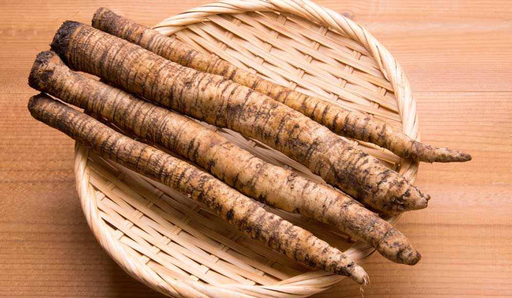 Burdock root herbs on a wooden bowl