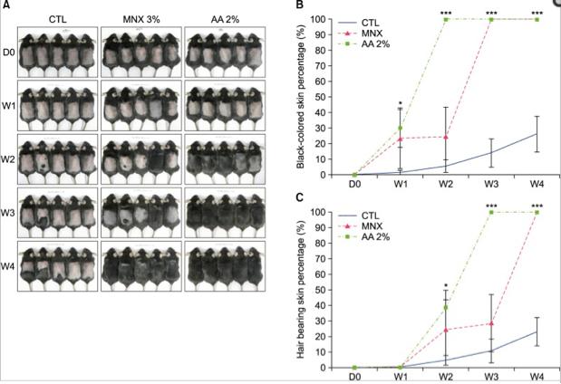 Hair growth in mice using evening primrose oil