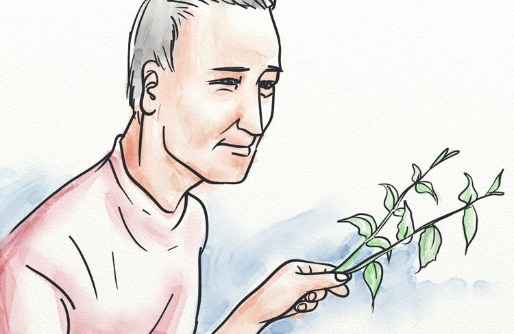 Holding a stinging nettle ready for making tea