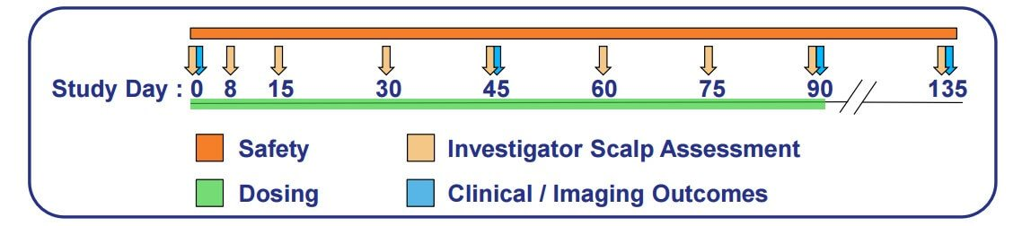 An image showing the timeline of the phase 2 trial