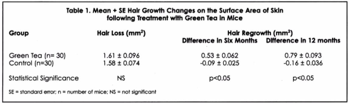 Green Tea mice hair growth results