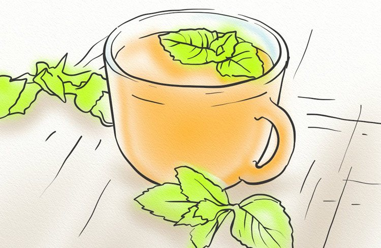 Spearmint tea healthy hair