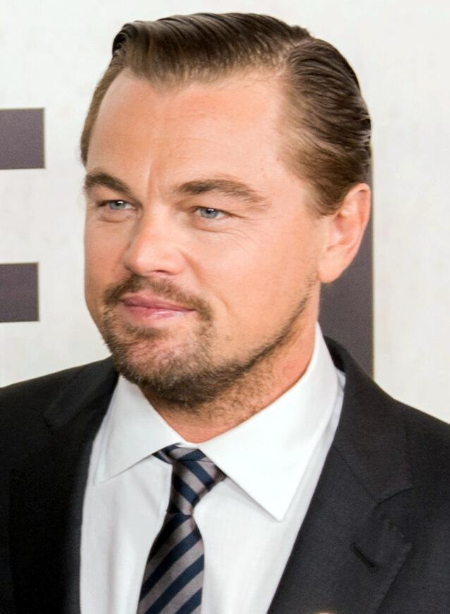 Leonardo DiCaprio with a stage 2 hairline