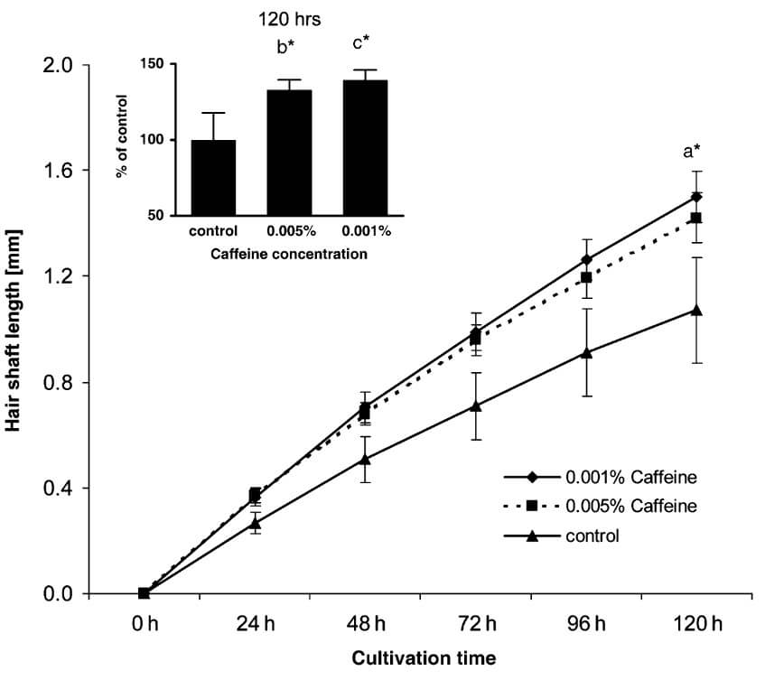 Hair shaft length after cultivation in caffeine