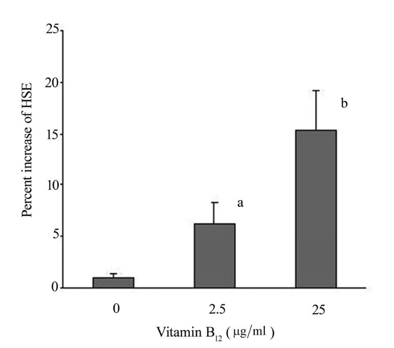 The effects of vitamin B12 on percent change of hair shaft elongation