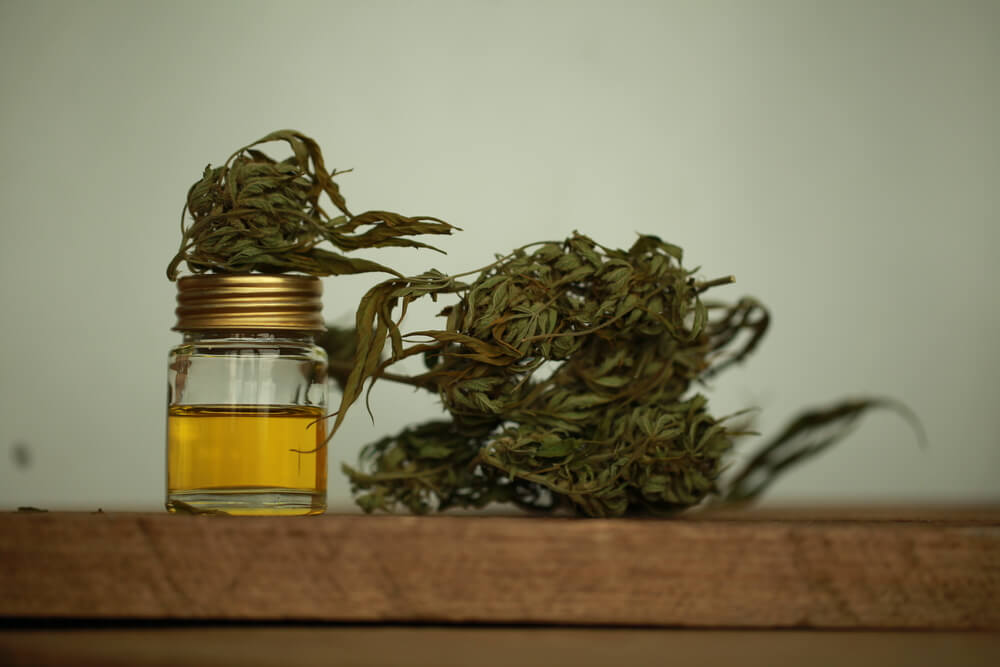 CBD oil and dried cannabis