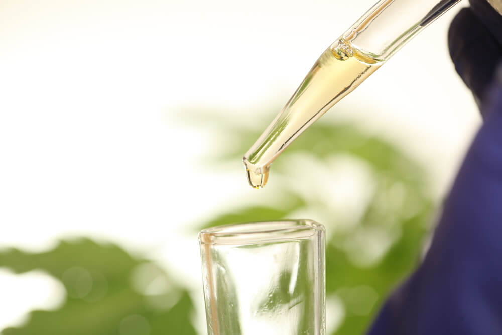 CBD oil being added to a glass bottle in a laboratory